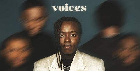 Voices - Tusse Klingeltöne